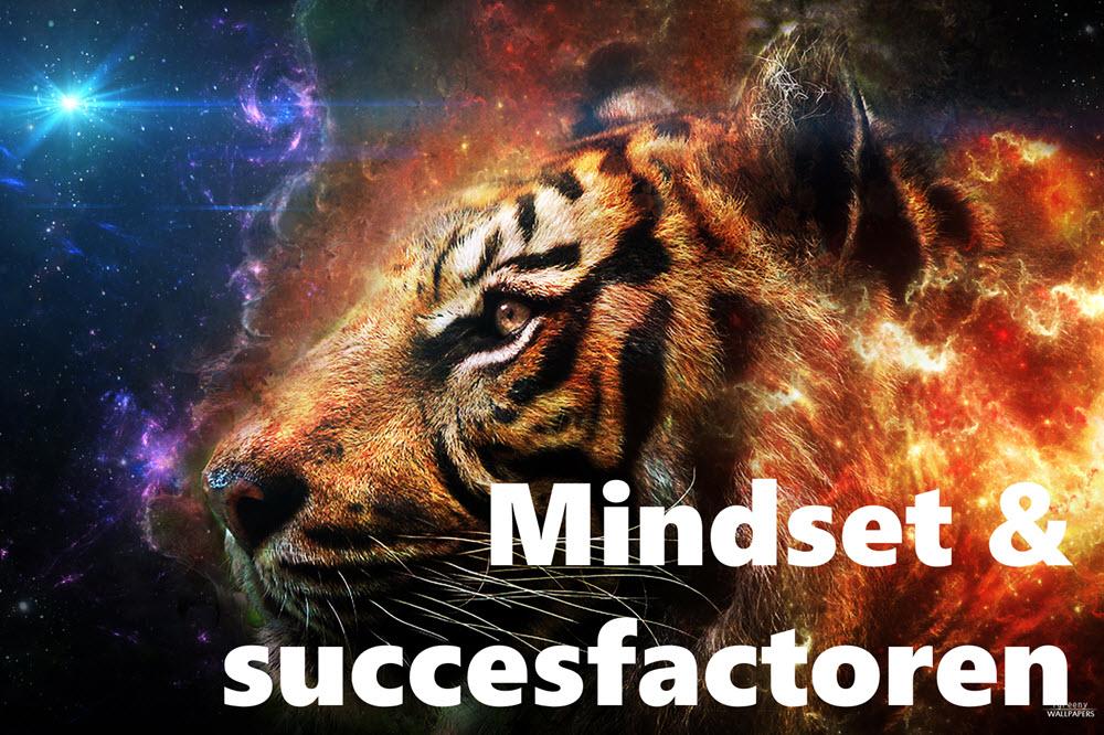 Mindset en succesfactoren