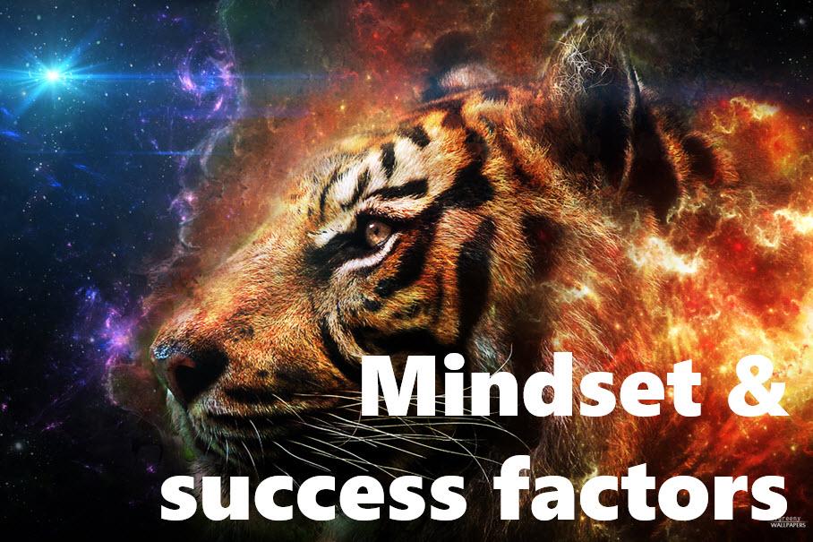 Mindset and success factors