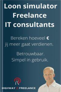 Loon simulator freelance IT consultants